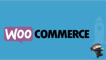 Most Popular Woocommerce Themes