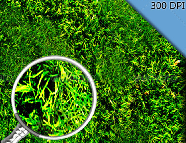 Realistic Grass Texture Design