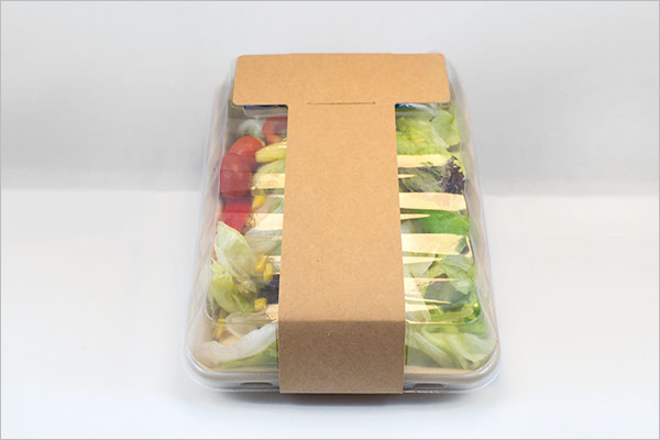 Salad Packaging Mockup Free Vector