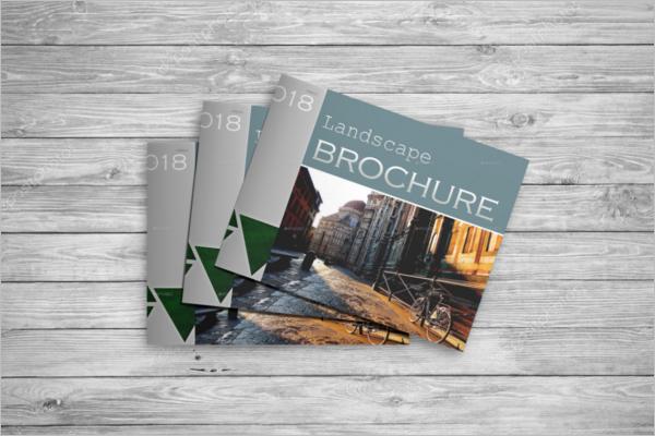 Set Of Brochure Mockup Design