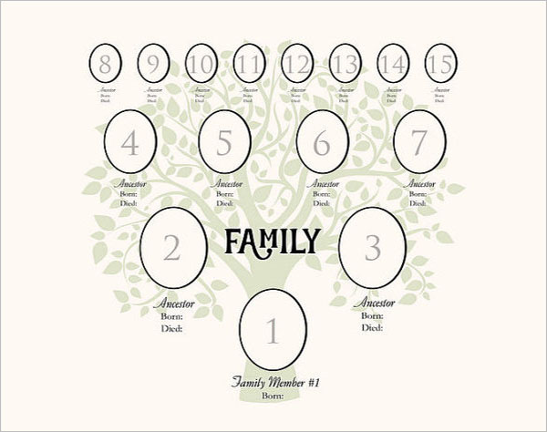 4 Generation Family Tree Digital Template