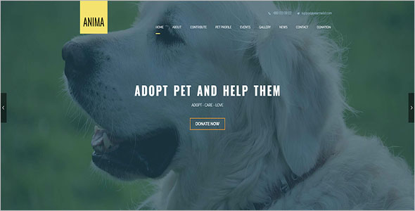 Animal Club Bootstrap Theme