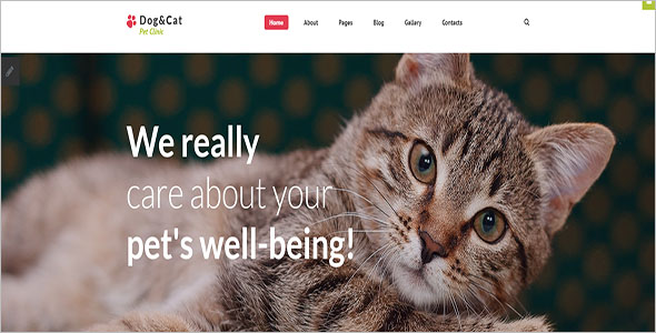 Animal Pet Bootstrap Template