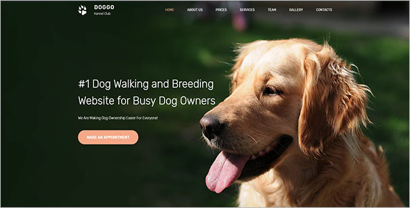 Animal Shelter Bootstrap Template