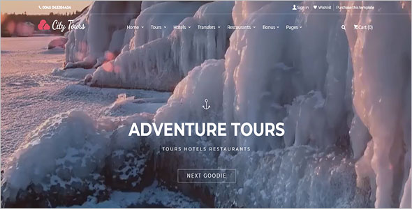 Attractive Tours HTML Website Template