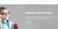 Beautiful Business WordPress Theme