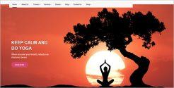 Beautiful WordPress Theme