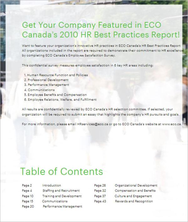 Best HR Report Template