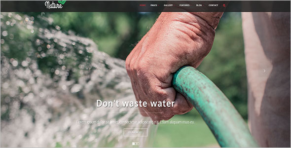 Bootstrap Template For NGO