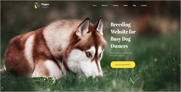 Bootstrap Theme For Animal