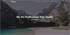 Clean Marketing Agency WordPress Theme