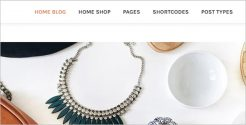 Creative Jewelry Blog Theme