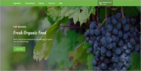 EcoOrganic Prestashop Responsive Theme