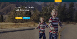 Finance Insurance WordPress Theme