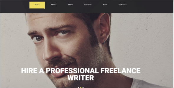 Freelance Writer WordPress Website Theme