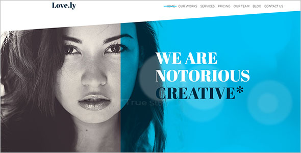 Freelancer Drupal Theme