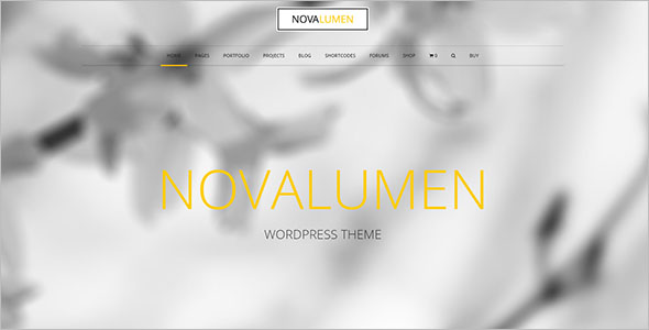 Full Screen Business WP Theme