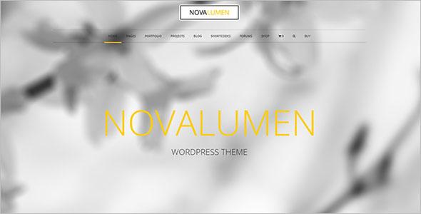 Full Screen Business WP Theme