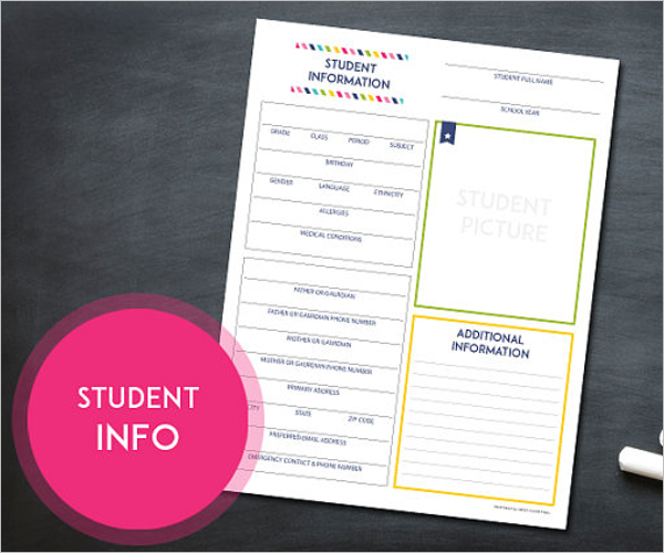 Grade Book Template For Student
