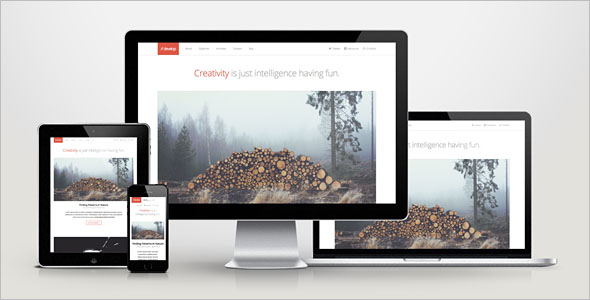 HTML5 & CSS3 WordPress Theme