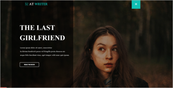 Hire Writer Freelancer Website Theme