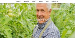 Joomla Template for Organic Food