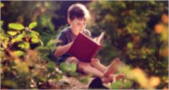32+ Kids Website Templates
