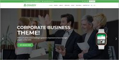 Modern Business WordPress Website Theme