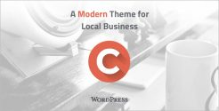 Modern WordPress Theme for Local Business