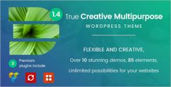 Most Popular WordPress Theme