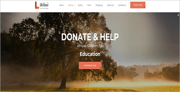 Multipurpose Non-Profit Blog Template