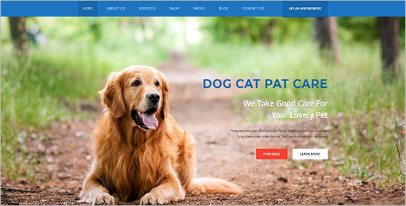 New Animal Bootstrap Template