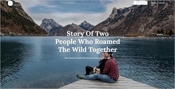 Online Freelancer Writer Website Theme