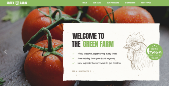 Organic Food WordPress Website Theme