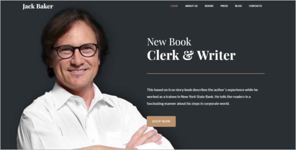 Popular Freelancer Writer Website Theme