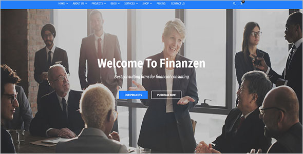 Premium Financial WordPress Theme