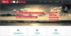 Premium HTML & CSS WordPress Theme