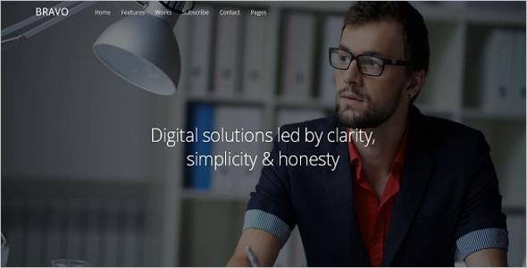 Professional Writer Website Theme