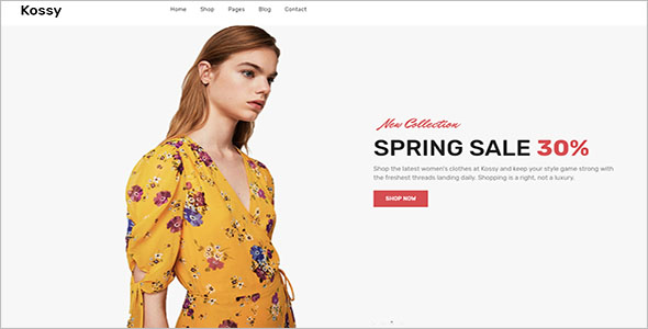 Retail Store Blog Theme