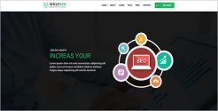 SEO Marketing Agency WordPress Theme