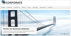 SEO Optimized Business WordPress Theme