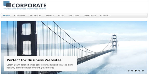 SEO Optimized Business WordPress Theme