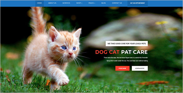 Simple Animal Bootstrap Template