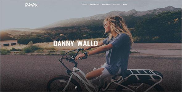 Single Page CSS3 WordPress Theme