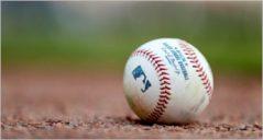 17+ Best Baseball Website Templates
