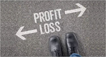 Profit And Loss Statements