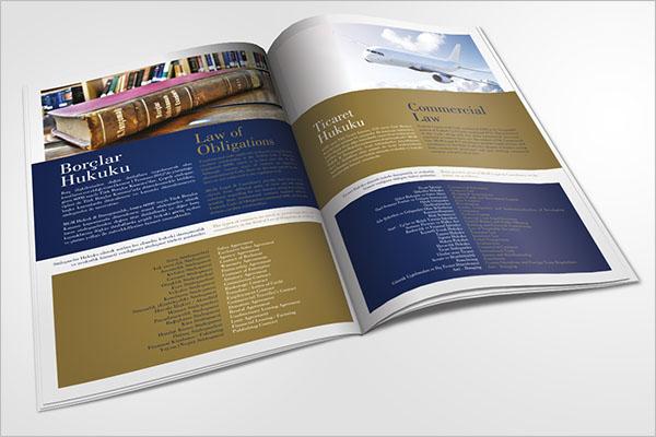 Client Legal Brochure Template