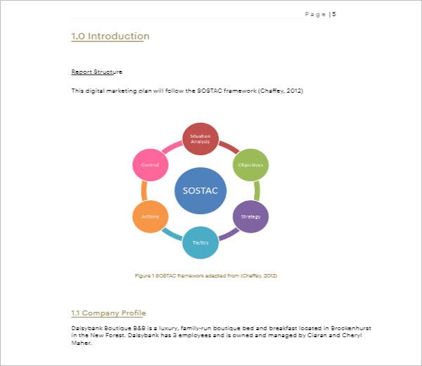 Digital Marketing Strategy Analysis Template