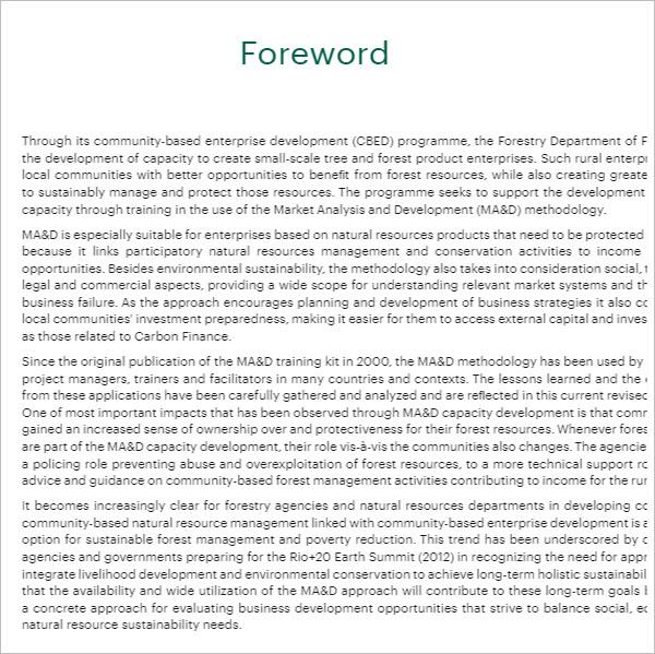 Digital Marketing Strategy PDF Template