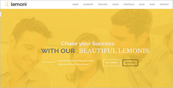 Drupal Theme For Business